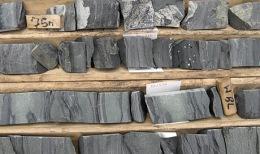 Bohrkerne von Champion Minerals