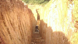 Brazil Resources - Trench at the Cachoeira Project