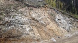 Vererzung auf dem Driftwood Creek-Projekt; Foto: MGX Minerals