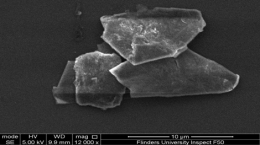 Graphene platelets from TTF process; Quelle: First Graphite