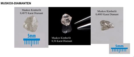 Makrodiamanten vom Muskox-Projekt; Foto: Crystal Exploration